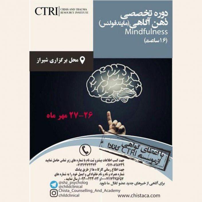 کارگاه تخصصی ذهن آگاهی