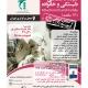 کارگاه تخصصی خانواده درمانی در تهران